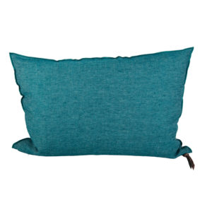 COUSSIN-VICE-VERSA-LIN-LAVE-FROISSE-CANARD-GIVRE